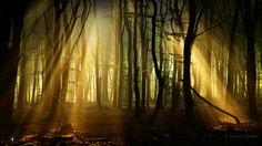 Dark Places by Nelleke.deviantart.com on @deviantART