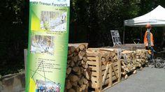 CAPA Travaux Forestiers→ Forêt dans La Ville → Sainte-Marie-Aux-Mînes