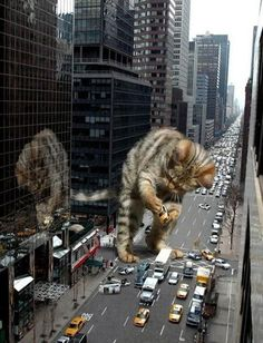 Nothing great was ever achieved without enthusiasm. ~ #RalphWaldoEmerson #cats #art http://awakenyc.com/