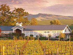 Redbook top wine tour destinations.  Walla Walla, Washington Baby!!  And the easily the Meca for all Foodies!!