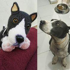 #pitbull #amigurumi #crochet #crochê #crochetdoll #instacrochet #ganchillo #hechoamano #handcraft #handmade #dog #amigurumidog #amigurumipitbull #crochetdog #crochetpitbull  #uncinetto #virka #haken #häkeln #hækle #tigisi #örgüoyuncak #örgü #amigurumitoy #diy #craft #crafty by paito.najera