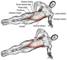 An isolation push exercise that works many muscles! Muscles worked: Internal and External Obliques Gluteus Medius Gluteus Minimus Tensor Fasciae Latae Quadratus Lumborum Psoas Major Iliocastalis Lumborum Iliocastalis Thoracis Fitness Workouts, Gym Workout Tips, Fitness Tips, Fitness Motivation, Health Fitness, Circuit Fitness, Bridge Workout, Kickboxing Workout, Fitness Classes