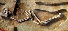 El Hombre de Mungo es el el ancestro de los aborígenes australianos - http://www.absolutaustralia.com/el-hombre-de-mungo-es-el-el-ancestro-de-los-aborigenes-australianos/