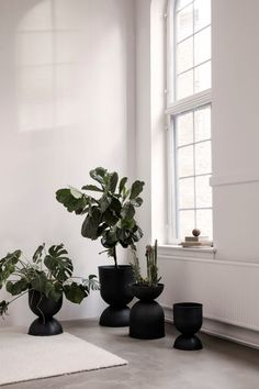 Ferm Living's Hourglass pot elevates your plants to new heights. The pot, as the name suggests, has an unusual hourglass shape. Small Plants, Green Plants, Potted Plants, Indoor Plants, Succulent Plants, Water Plants, Tropical Plants, Indoor Garden, Ferm Living Plant Stand