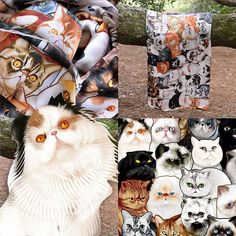 "Do ya'll know @graveskullthepersian? He's on a silk scarf with 77 other cats.  We're running a Graveskull promotion. Use coupon code ""graveskull"" to get $10 off the #Catmina silk scarf on which @graveskullthepersian is on with 77 other cats.  To use the coupon go to  http://ift.tt/1h3HZ0O  Or use our bio link.  #scarf #fashion #catscarf #exoticshorthair #cat #cute #instacat #flatface  #cats #catsagram  #animallovers #kitten #meow #pet #mreggs #catlover #petsagram #catstagram…"