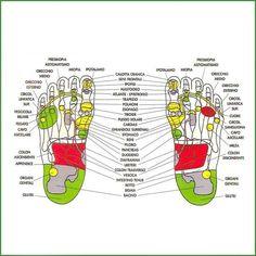 La riflessologia plantare è un tipo di massaggio che viene fatto con i pollici delle mani sulla pianta dei piedi e serve a riequilibrare l'energia e il benessere nel nostro corpo. Esiste mappa dei punti riflessi su cui si possono esercitare delle pressioni per ottenere benefici effetti e secondo gli esperti basterebbero solo 15 minuti al giorno da dedicare alla cura dei piedi per avere dei risultati utilissimi dal punto di vista del benessere psico-fisico.