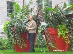 Red flower pots