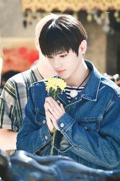 pin | floralraine ❋
