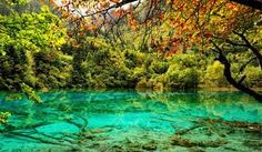 Such a nice place & beautiful scenery in jiuzhai gou, china where I go on holiday last week, wanna share the photo and I hope all of you enjoy this . Clear Your Mind and Heart Nature Photography Tips, Photography Pics, Artistic Photography, Picture Search, Image Search, Going On Holiday, Fantasy Landscape, Artist Names, Nature Pictures