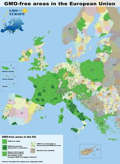 Europe has GMO free areas and GMO labelling. Did that cause the drop in the Euro? No.