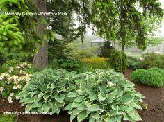 Pinafore Park, St. Thomas, Ontario, Canada