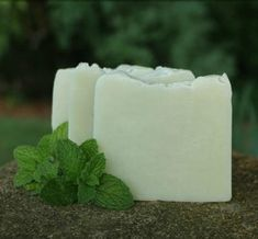Mint fans, rejoice, this is the DIY soap recipe for you! This Garden Mint DIY Cold Process Soap is sure to be a new favorite. In this homemade soap recipe, the peppermint essential oil is refreshing to your senses and will help you feel energized. Soap Making Recipes, Homemade Soap Recipes, Belleza Diy, Soap Making Supplies, Handmade Soaps, Diy Soaps, Handmade Products, Homemade Beauty Products, Cold Process Soap