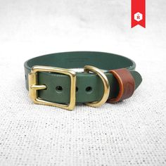 Personalised Leather Dog Collar | Green & Chestnut | HOUNDWORTHY