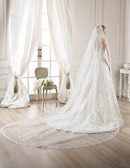 Pronovias presents its V-2765 veil for brides.   Pronovias