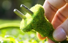 Dutch Company Powers Streetlights With Living Plants; Will Your Cell Phone Be Next? This promising new technology derives substantial amounts of electricity from living plants. Green News, At Risk Youth, Save Our Earth, Green Technology, Sustainable Energy, New Energy, Sustainable Development, Alternative Energy, Live Plants