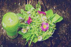 Muntermacherkräuter Smoothie Avocado Smoothie, Celery, Cantaloupe, Fruit, Vegetables, Food, Strawberries, Smoothie Ingredients, Healthy Fruits