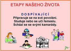 ETAPY ŽIVOTA :: Béčko-Tc Štístkové Ecards, Comics, Anatomy, E Cards, Cartoons, Comic, Comics And Cartoons, Comic Books, Comic Book