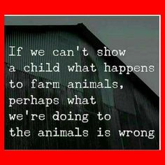 Perhaps we should reexamine our lives. The truth will set you free. #veganism #govegan #vegans #veganfortheanimals #animalsarefriends #animalrights