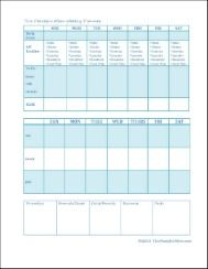 Weekly Planner 3--Morning routine, household duties, blogging,  daily schedule, shopping list, calls to make and more!