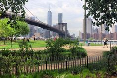 11 Must-See Sites in Dumbo, Brooklyn