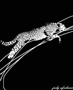 Panther, Giraffe, Animals, Animales, Animaux, Giraffes, Animal, Animais