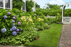 A picket fence, with a gated arch, frames this cottage-style entry garden in Nantucket. The flower beds' undulating curves echo the billowing forms of the blooming hydrangeas and daylilies.