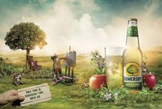 Newton_somersby_6sheets