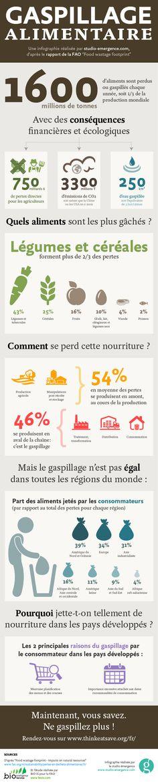"""1/3 de la nourriture produite chaque année dans le monde est perdue ou gaspillée. Nous avons créé cette infographie à partir du rapport de la FAO """"Food wastage footprint"""" #infographic"""