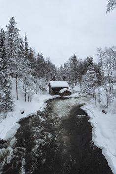 Forest Cabin, Snowy Forest, Snowy Trees, Pine Forest, Free Photos, Free Images, Outdoor Toilet, Snowy Woods, Wood River