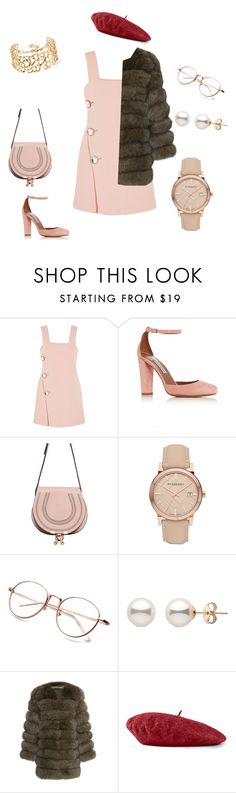 """""""Rose"""" by ludopolier ❤ liked on Polyvore featuring Marni, Tabitha Simmons, Chloé, Burberry, Gucci and Oscar de la Renta"""