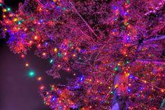 """santa-land:  """"active all year round christmas blog!  """""""