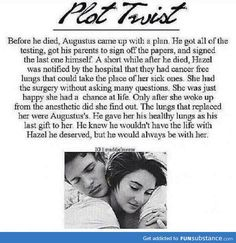 plot twist in The Fault In Our Stars (TFIOS)
