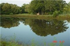Old Waelder Rd.  Flatonia Texas
