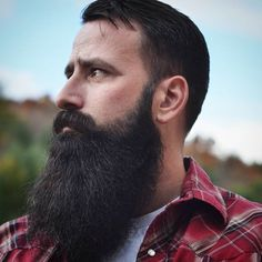 "silverbearded: "" bearditorium: "" BF "" This gentleman has a wonderful beard. """