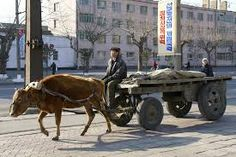 Image result for ox cart