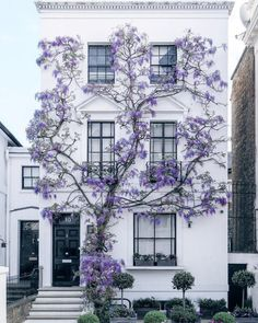 Maybe you don't need to add shutters and have 3 colors for your exterior - MAYBE you just need a GORGEOUS wall-climbing flower like WISTERIA! House front inspiration, major curb appeal ideas, how to make your house POP from the rest. Exterior Design, Interior And Exterior, Ranch Exterior, Exterior Stairs, Grey Exterior, Cottage Exterior, Room Interior, Architecture Design, Spring Architecture
