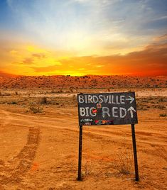Check out the Sand Dunes at Big Red or drive into the town of Birdsville and meet the locals South Australia, Western Australia, Australia Travel, Places To Travel, Places To See, The Locals, Fresh Water, Sunsets, Touring