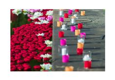 #Floraliadecor #brightcolors #magicalilluminations #charmedwater