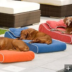 Memory Foam Contour Pet Lounger $199 @ Frontgate -- maybe I could make something cheaper?
