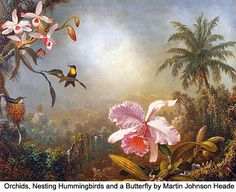 Martin Johnson Heade paintings - Google Search