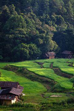 Chiangmai, Thailand - my hometown