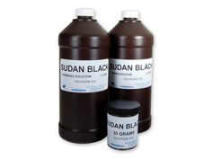 Dyeing to remember the good old stains   Sudan black: a fast easy and non-toxic method to assess myelin repair in demyelinating diseases.Ineichen BV Weinmann O Good N Plattner P Wicki C Rushing EJ Linnebank M Schwab ME. Neuropathol Appl Neurobiol. 2016. doi: 10.1111/nan.12373. [Epub ahead of print]AIMS: The search for novel drugs that enhance myelin repair in entities such as multiple sclerosis has top priority in neurological research not least because remyelination can hinder further…