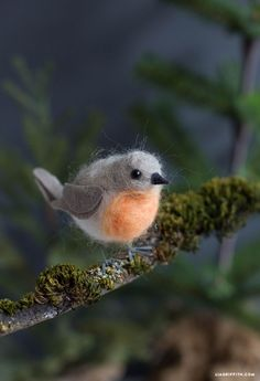 Make your own super-gorgeous needle felt robin with this simple DIY tutorial from handcrafted lifestyle expert Lia Griffith and her team of super-makers!