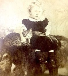 Rare Antique Cabinet Photograph of Cat with a child W J Robinson Landport 1880  | eBay