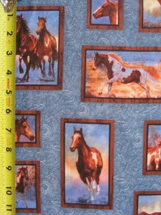 Blue Mist Frames Horse Wild Wings 100% Cotton Quilt Fabric BTY Yards Equine NOB #SpringsIndustries