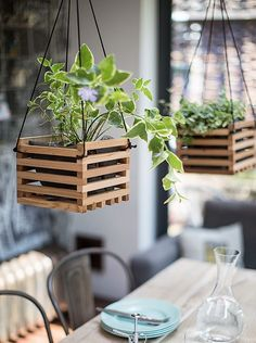 The Best Indoor Houseplants for Low Light And Clean Air + 11 Genius Potting Ideas Diy Hanging Planter, Wood Planters, Planter Boxes, Planter Ideas, Hanging Pots, Hanging Basket Plants, Hang Plants On Wall, Air Plants, Indoor Plants