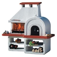 Wood Fired Pizza Oven & Charcoal Grill Combo! Made in Italy!