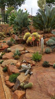 Cacti &succulents garden                                                                                                                                                                                 More #DesertLandscape