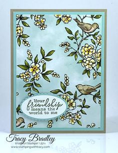 Stampin' Up! Bird Ballad (Stamping With Tracy) Fun Fold Cards, Friendship Cards, Bird Cards, Scrapbooking, Card Kit, Color Card, Paper Cards, Stamping Up, Flower Cards
