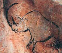 -- Chauvet Cave Paintings -- UNESCO World Heritage Site -- Rhinocerus -- BCE. Fourteen different animal species are depicted in the Chauvet Cave. Ancient History, Art History, European History, Ancient Aliens, American History, Chauvet Cave, Paleolithic Art, Rhino Art, Cave Drawings